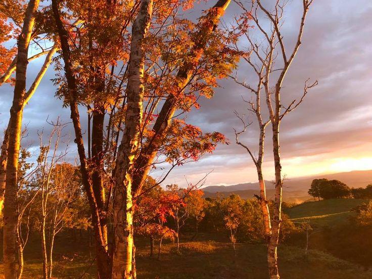 Autumn at Zaborin | Photo credit Michael Lin | zaborin.com