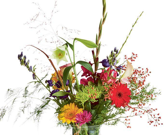 Bloemen van DEEN worden gratis thuis bezorgd, komen dagelijks vers van de veiling en worden met de hand gebonden door professionele bloemisten. Zeker 1 week vaasgarantie! Dit boeket bevat: •Asparagus •Lelie •Rozenbottel •Chrysant •Gerbera •Aconitum •Gras •Roos •Calla •Salix katjes •Gladiool