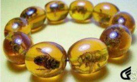 Rare Asian jewelry Amber Colored Bee Bracelet  shipping free