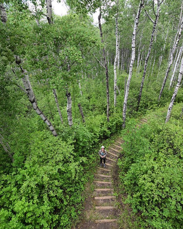 14 Incredible Hiking Trails In Saskatchewan To Add To Your Summer Bucket List - Narcity
