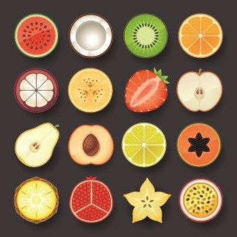 Vivid food icon design vector 01