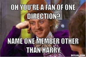 this is fact, people on will say oh you like One Direction with you know Harry Styles, then I wait for more names, they never come. I hate you people, was that harsh...I was aiming for harsh