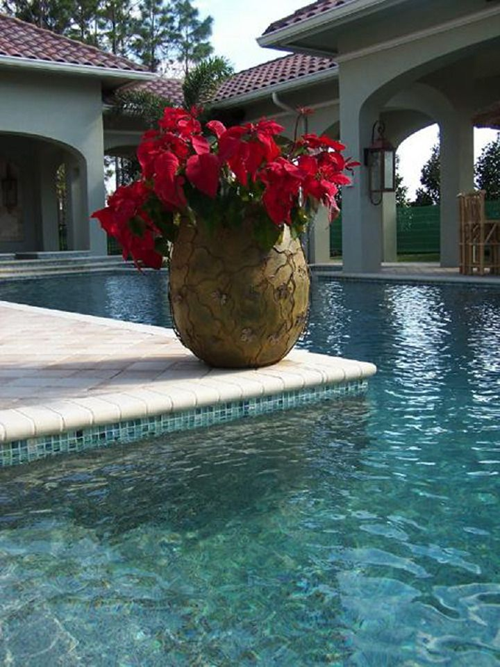 12 best Poolside Retreat images on Pinterest   Agates, 4 in and ...