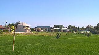 AGENT PROPERTY BALI: Di Jual Tanah Lingkungan Villa Di Tumbak Bayuh Per...