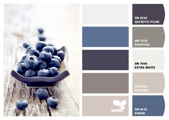 """Paint colors from Chip It! by Sherwin-Williams """"ANGORA"""""""