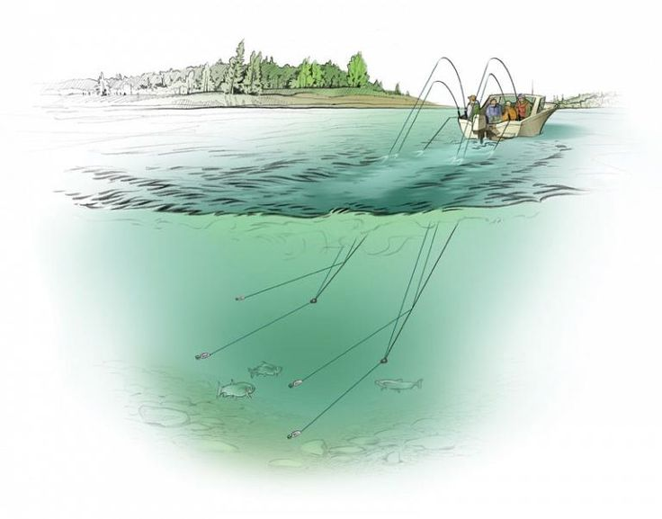 Can't find the fish? Here are some expert trolling tips to help you out