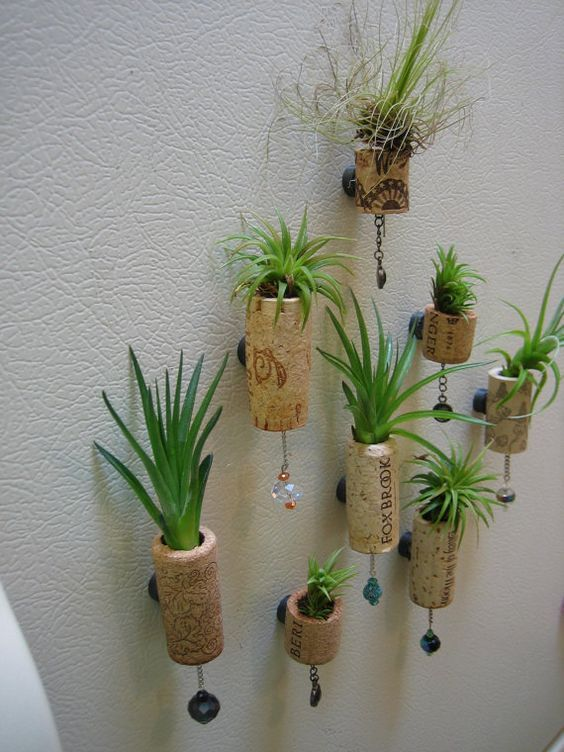 13 Best Images About Succulents Mom On Pinterest Vase
