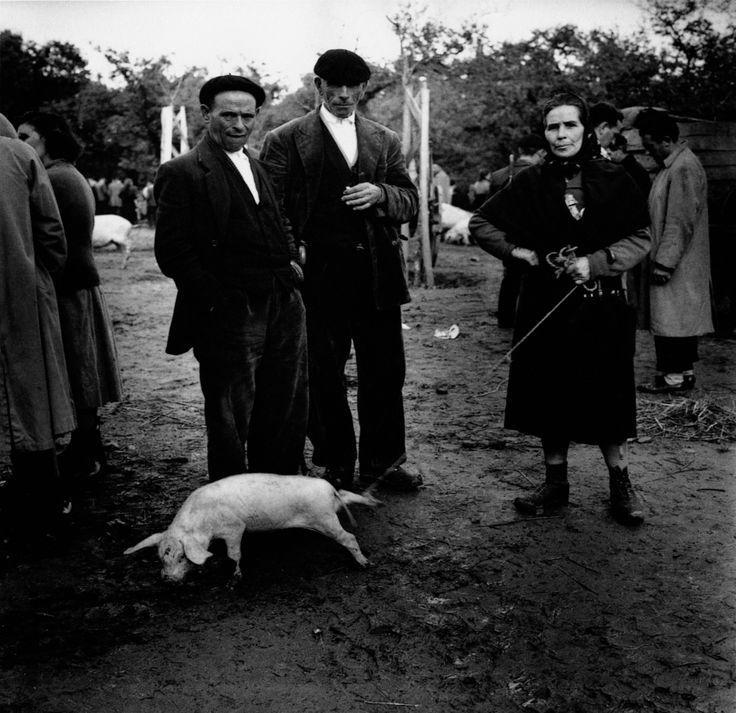 Feira na carballeira de Santa Susana en Santiago de Compostela (1958)