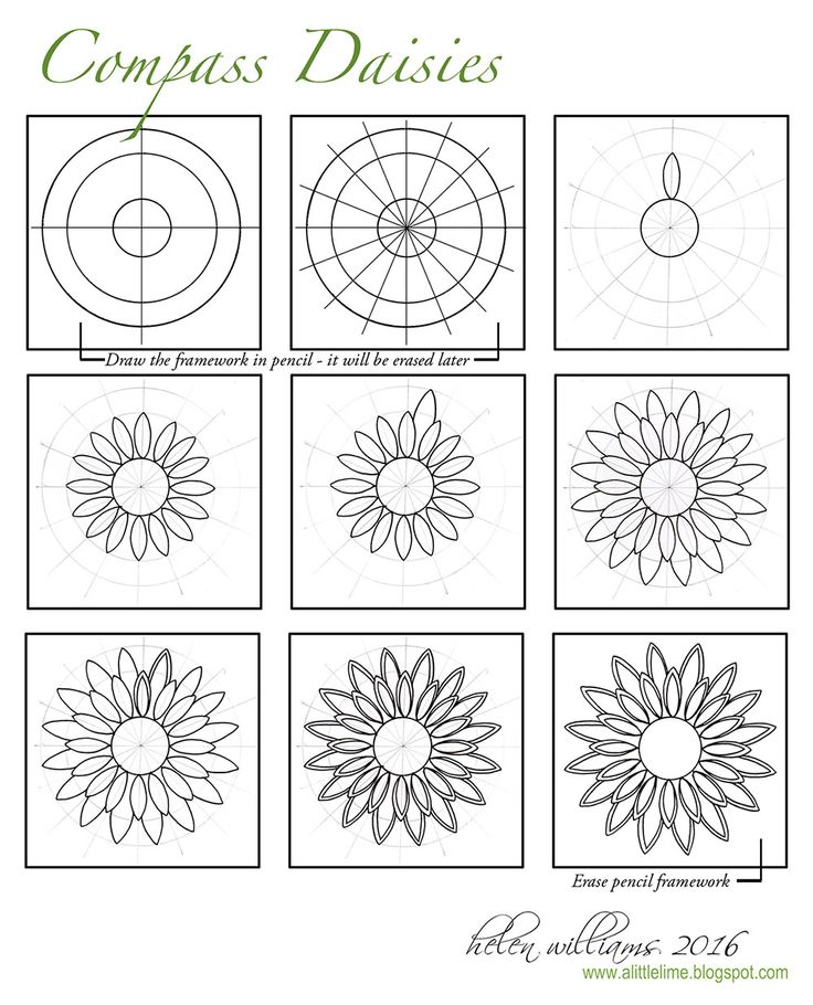 a little lime: Compass Daisies - Step Out & Quick Draw Video