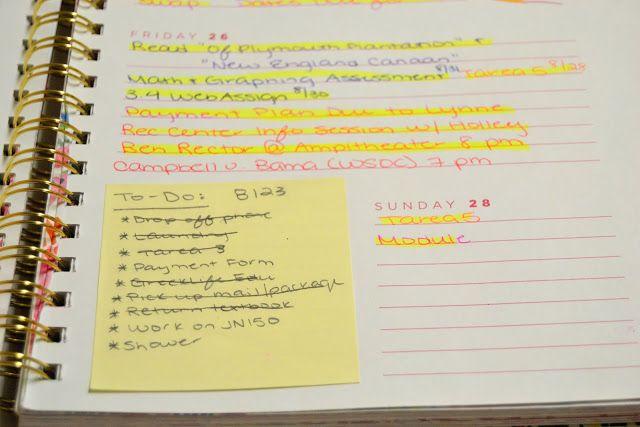 Sass del Sur: Agenda Organization   Freshman Year of College
