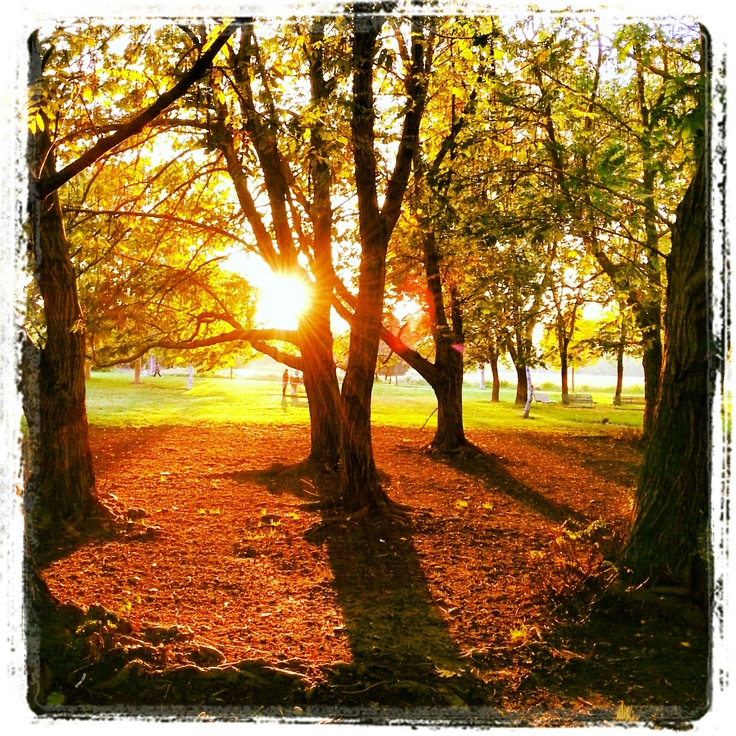 Tramonto in autunno