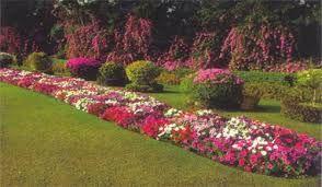 bahçe peyzajı ile ilgili görsel sonucu