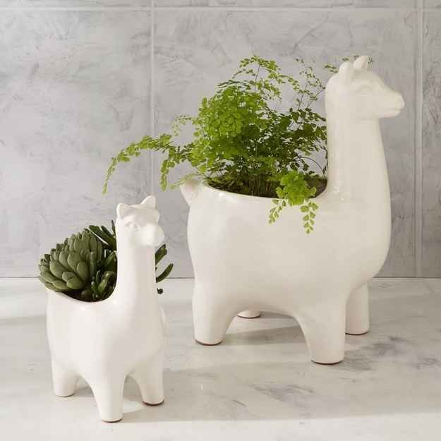 A llama planter that alpacas a punch.