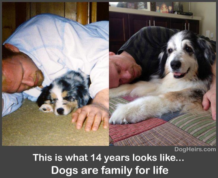 I'm a dog person!.....