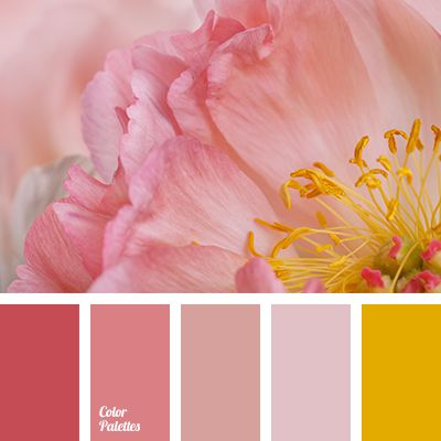color combination for summer