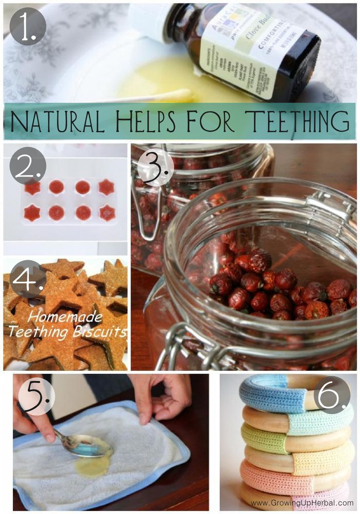 6 Teething Remedies You've Just Got To Pin | GrowingUpHerbal.com | Here are 6 great teething helps for your little ones!