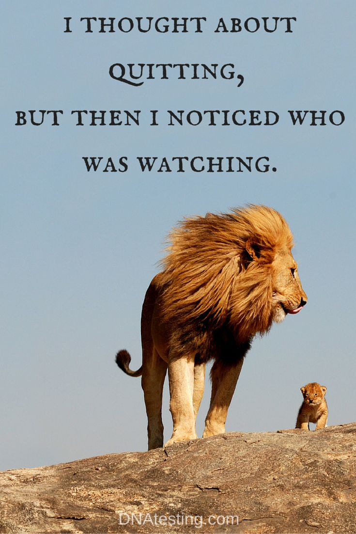 INSPIRATION and QUOTES: I thought about quitting, but then I noticed who was watching.