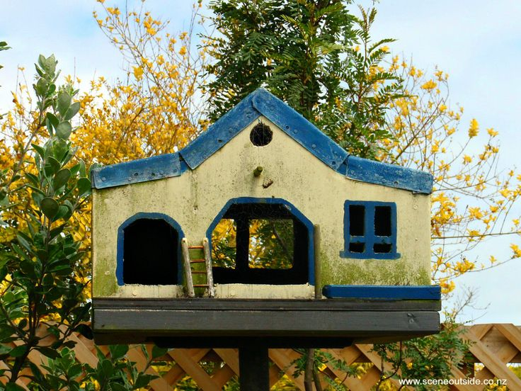 This birdhouse could do with some fresh paint, but don't you love the ladder?