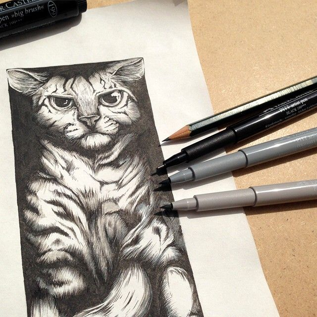 Black-white drawing for Happy World Cat Day! Drawing by @grafiksolistin #worldcatday #weltkatzentag #katze #cat #pittartistpen #indiaink #drawing #illustration #castell9000 #fabercastell