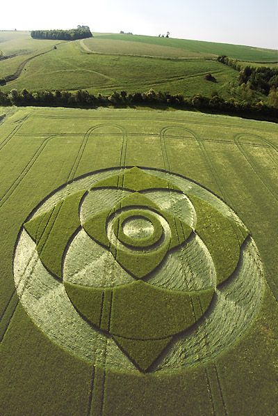 I have truly seen a few beautiful Crop Circles.  They are always amazing......