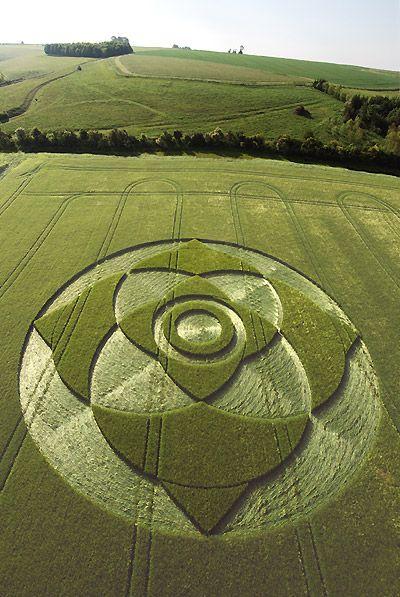 Crop circle - mind boggling