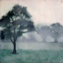 Idea: underlay photos at different depths of wax to create atmospheric perspective. Bridgette Meinhold encaustic painting