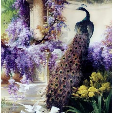 Bidau Peacock, Wisteria, Doves Shower Curtain   Wisteria, Victorian Gardens  And Peacocks