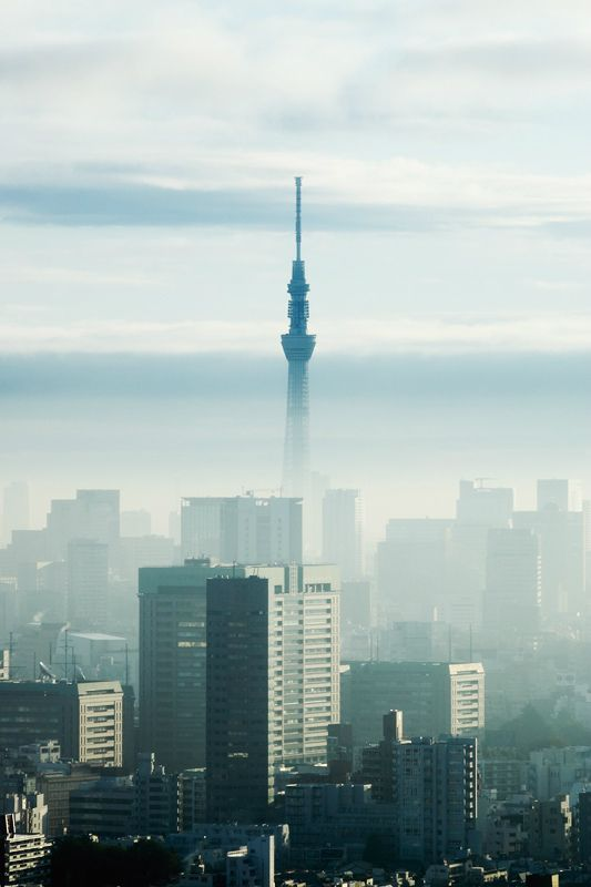 Tokyo Skytree: the World's largest Telecom Tower © Flickr User: Joe Hsu #Japan #Tokyo