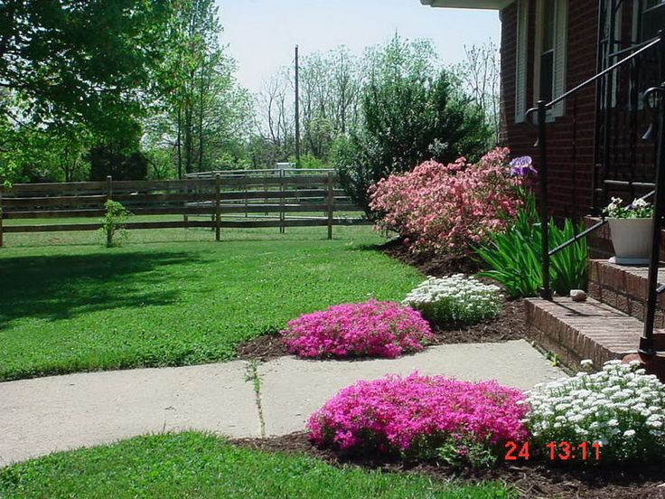 Best 25 cheap landscaping ideas for front yard ideas on for Cheap low maintenance garden