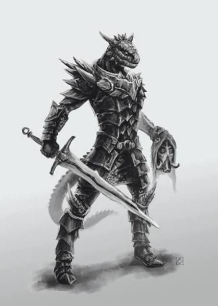 24 Best D Amp D Dragonborn Images On Pinterest Character