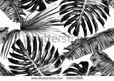 Afbeeldingsresultaat voor gatenplant blad tekening