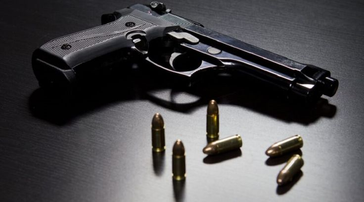 How to apply for a firearm licence - CrimeSA.com