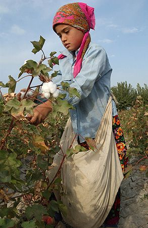 Beto or Troian Center chores. Uzbek child picking cotton. Uzbekistan www.thegenevaprojectbook.com #TGP #TGP2