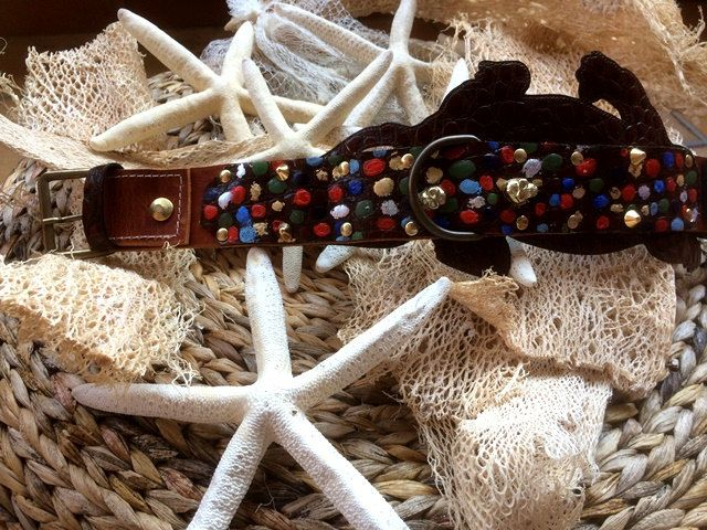 Luxury Limited edition alligator leather hand made in Italy Dog collar '' Crocodylus'' Collection by CaveCanemItaly on Etsy