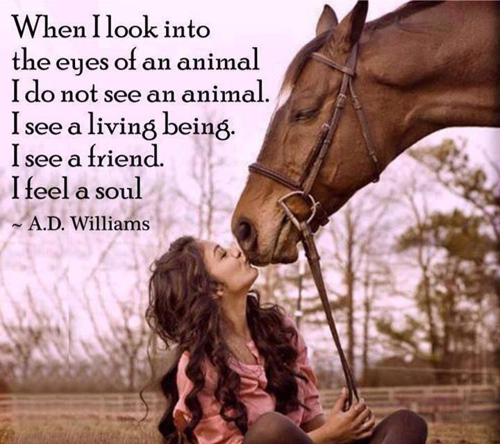 best things about being a veterinarian