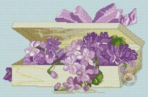 Boite violettes