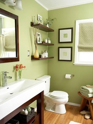 Green Bathroom, Dark Wood jamie_strang — Like this color combination. It's enlivening and refreshing while still relaxing. Could still go nicely with dark wood floors.