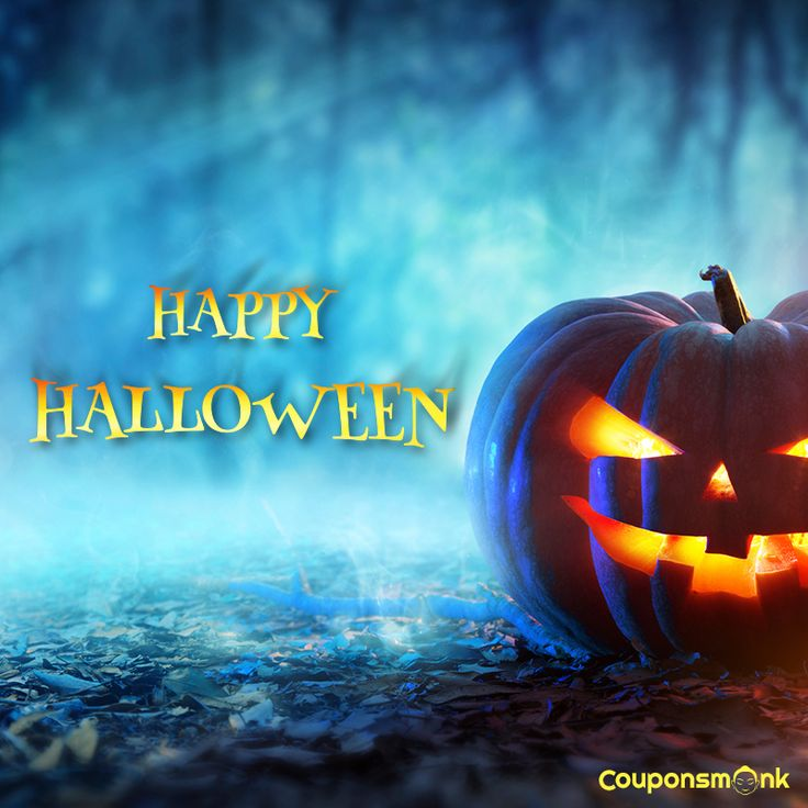 28 best couponsmonk festival special day offers and coupon code when black cats prowl and pumpkins gleam may luck be yours on halloween https fandeluxe Choice Image
