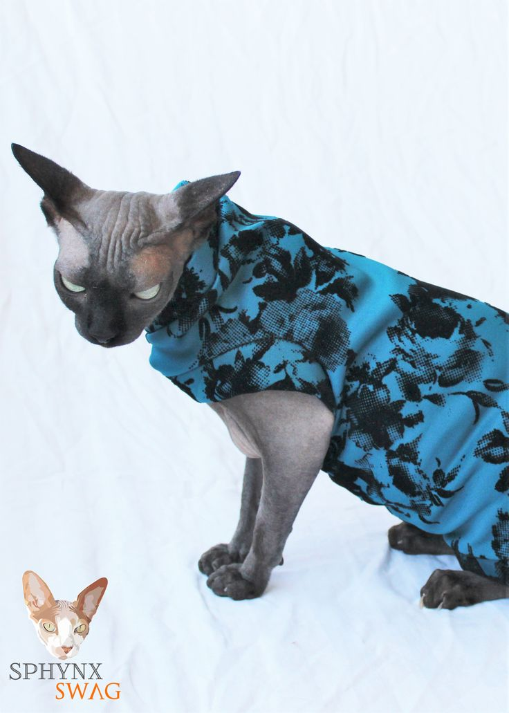 FREE SHIPPING IN THE USA - ALL ORDERS SHIPPED WITHIN 24 HOURS International shipping is below actual cost.  This is a Limited Edition cat shirt / sweater for your hairless Sphynx / Devon Rex / Cornish Rex / Peterbald, and even for some of our stylish furry friends. This is a turquoise medium we...
