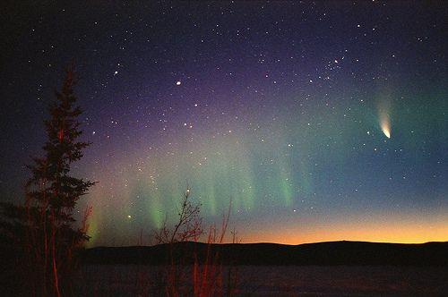 ♥Buckets Lists, Starry Night, Beautiful, Northern Lights, Night Time, Nightsky, Lights Aurora Borealis, Night Sky, Natural Beauty
