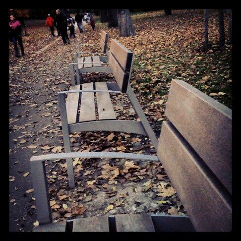 Autumn seats