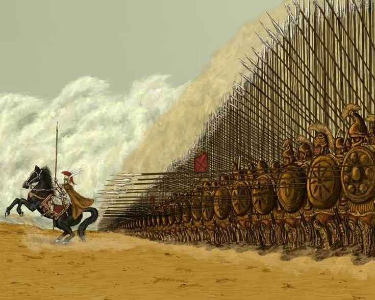Alexander's phalanx of Elite Hypaspist. When Alexander crossed to Asia in 334 BCE he had with him three battalions of hypaspists, each of 1,000 men. Their overall commander was Nicanor, son of Parmenion. Nicanor died (of natural causes) in 330 BCE; Alexander appointed Seleucusas their new commander.