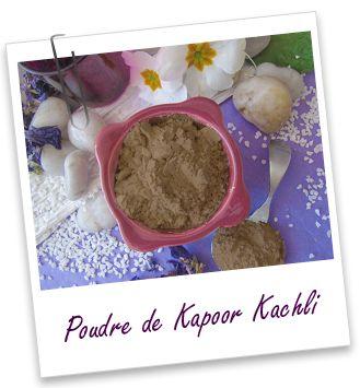 Fiche technique Extrait de plante : Poudre ayurvédique de Kapoor Kachli