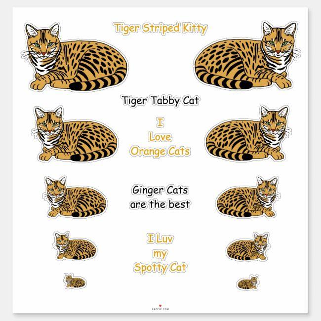 Orange Striped Tabby Cats Lg Sticker Set Zazzle Com Grey Tabby