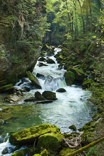 The river Areuse in the Val de Travers in the Swiss Jura mountains
