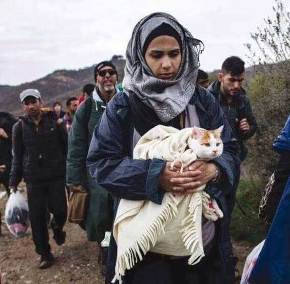 A Syrian refugee keeping her cat warm (2016)