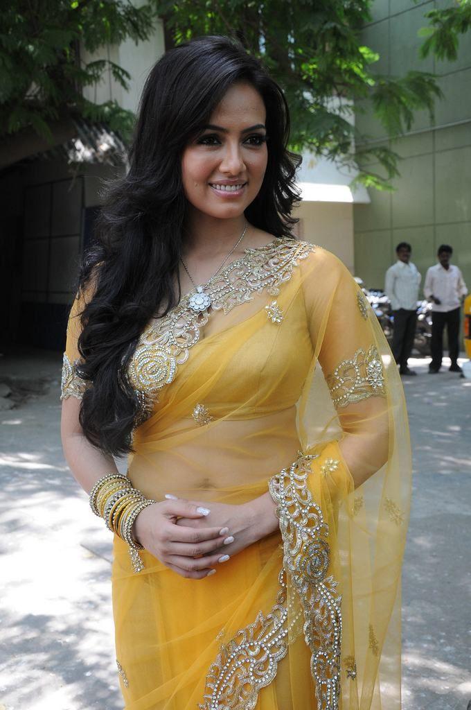 Sana Khan Latest Photos In Saree - Tollywood Stars