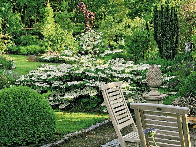 Лодка для многолетних мест - Сад Фото - Мой сад - gartenflora.de