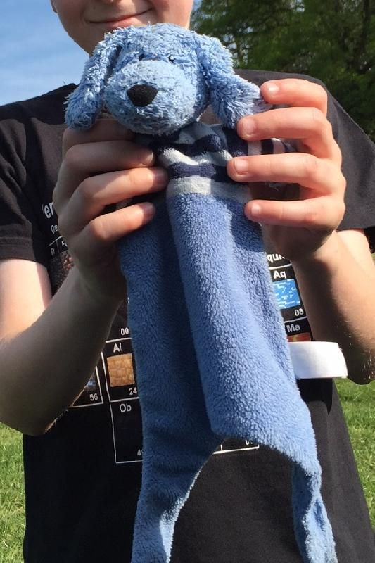 Found on 08 May. 2016 @ Hollycombe Working Steam Museum, Liphook, HANTS UK. We found this guy in the car park as we were leaving at 5pm on Sunday. Is he yours? We are keeping him safe until he is reunited with his owner Visit: https://whiteboomerang.com/lostteddy/msg/zf0jhv (Posted by Jez on 09 May. 2016)