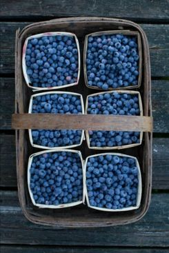 Start a healthy tradition and go out picking the wonderful berries that are in season now.